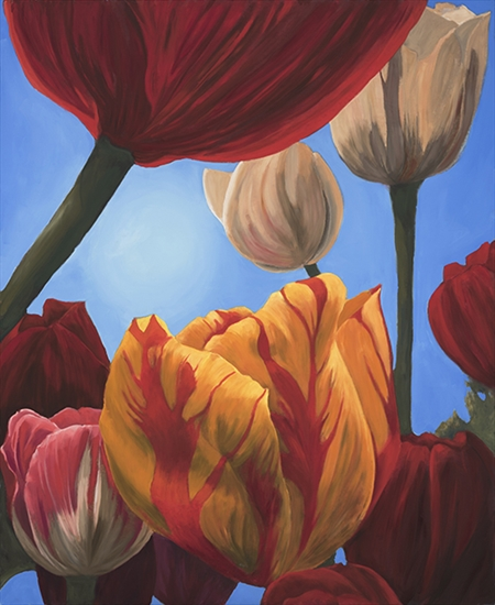Roger Beale - Floriade Tulips