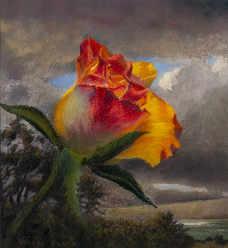 Roger Beale - Last Rose of Summer
